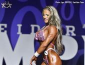2017 Olympia Weekend - Figure Olympia, Semifin