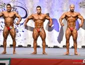 2015 Asian Championships - Bodybuilding 95kg FINAL
