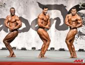 2015 Asian Championships - Bodybuilding 90kg FINAL