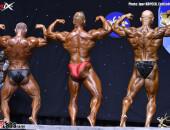 2016 World Masters - BB 40-49y plus 90kg