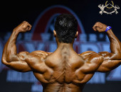2014 Olympia Amateur Moscow - Prejudging 75kg