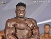 2017 ACE - Bodybuilding over 100kg