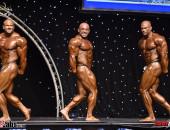 2017 Diamond Malta - Bodybuilding OVERALL
