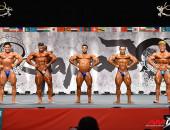 2015 Asian Championships - Bodybuilding 80kg