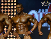 2014 Olympia Amateur Moscow - Prejudging over 100kg