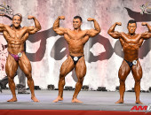 2015 Asian Championships - OVERALL Bodybuilding
