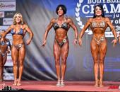 2017 Masters World Bodyfitness over 45y