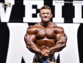 2017 Olympia Weekend - Bodybuilding 212, Semifinal