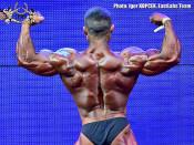 2015 World BB Spain - Bodybuilding 70kg