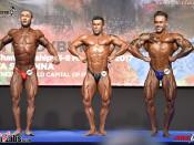 2017 European - BB 70kg and 75kg