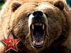 Objemový tréningový systém Russian Bear - popis, modifikácie (I)