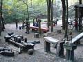 Navštívte s nami unikátnu lesnú posilňovňu v Gliwiciach