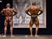 2019 AMIX - bodybuilding OVERALL