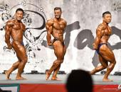 2015 Asian Championships - Bodybuilding 80kg FINAL
