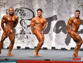 2015 Asian Championships - Bodybuilding 85kg