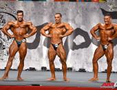 2015 Asian Championships - Bodybuilding 90kg