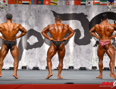 2015 Asian Championships - Bodybuilding 90kg