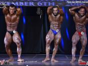 2016 World Champ - Bodybuilding 80kg