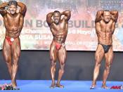 2017 European championships - Masters CB 45-49y