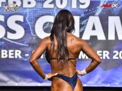 2019 WFC - Wellness Fitness 168cm