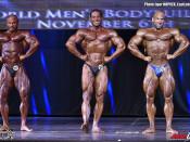2016 World Champ - Bodybuilding 95kg