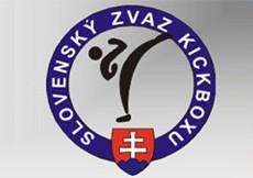 2014 SZKB Open liga