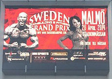 2014 Sweden Grand Prix - bodybuilding, fitness, bodyfitness