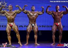 2015 World BB Spain - Bodybuilding Overall