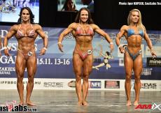 2015 World Fitness - W Physique 163cm plus