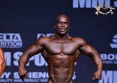 2015 Sweden GP - Bodybuilding over 90kg semifinal