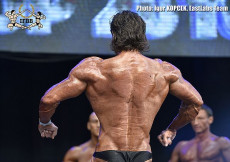 2016 Diamond - classic bodybuilding