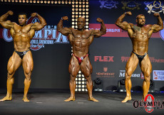 2014 Olympia Amateur Moscow - Final 95kg