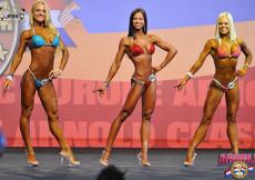 Bikini overall ACE2013