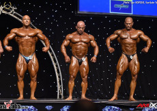 2017 Diamond Malta - Bodybuilding OVERALL