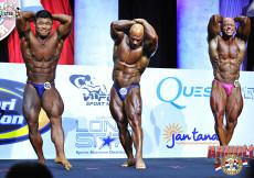 Bodybuilding up to 80kg prejudging
