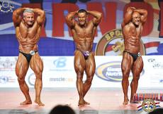 Bodybuilding up to 75kg final