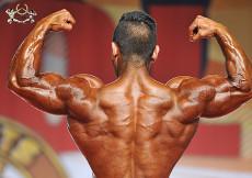 Bodybuilding up to 80kg final