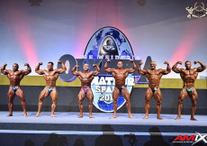 2015 Olympia Amat. Spain - Bodybuilding 90kg