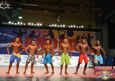 2014 AC USA overall Mens Physique
