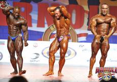 Bodybuilding up to 100kg final