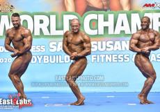 2020 World, Saturday - Bodybuilding 95kg plus