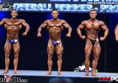 2016 Diamond - bodybuilding overall