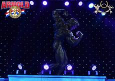 2015 Arnold Classic PRO - kategória Figure