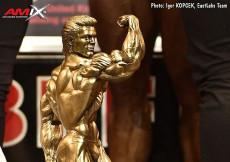 2017 UKBFF British - Bodybuilding OVERALL