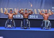 2014 Majstrovstvá Európy, telesne postihnutí