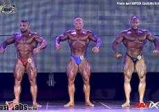 2015 World BB Spain - Bodybuilding 95kg