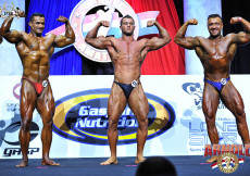 Bodybuilding up to 90kg prejudging
